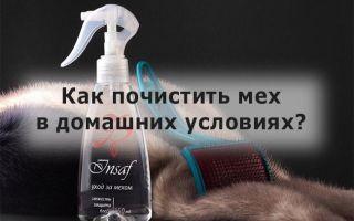 12 проверенных способов почистить мех норки, песца или любой другой
