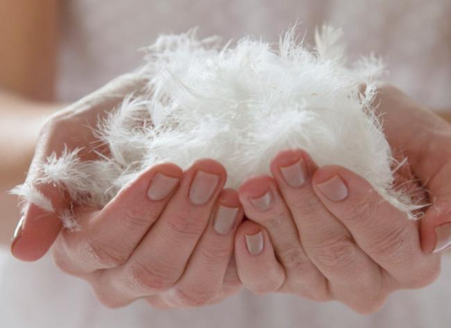 белый пух в чистых руках
