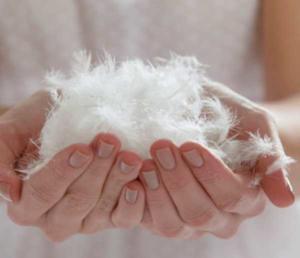 очищенные перья для подушки