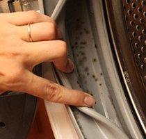 Плесень в стиральной машине на резинке